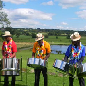 Tropical Rhythm | Steel Band | Steve Allen Entertainments